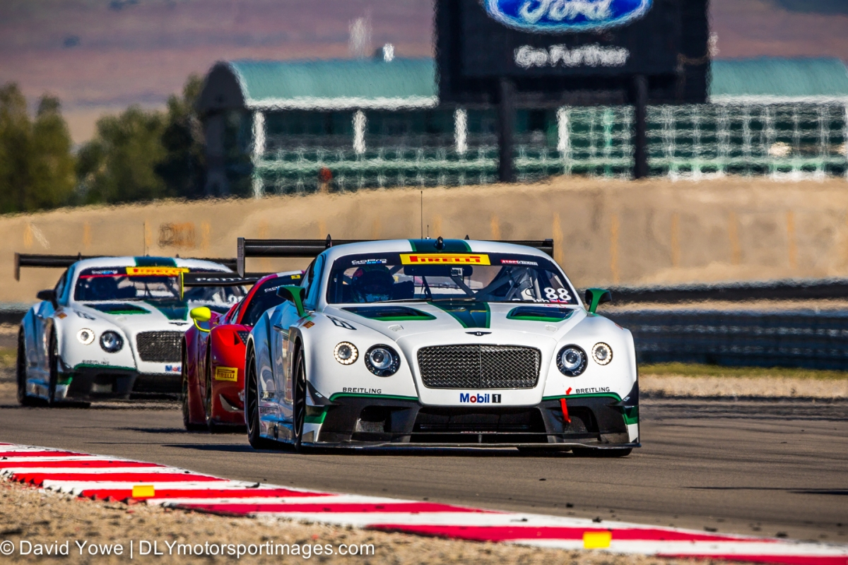 2014 Miller (#88 Dyson Racing Team Bentley Bentley V8 T)