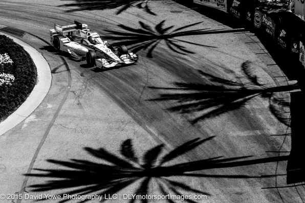 Imprints of palm trees (Long Beach, California, USA)