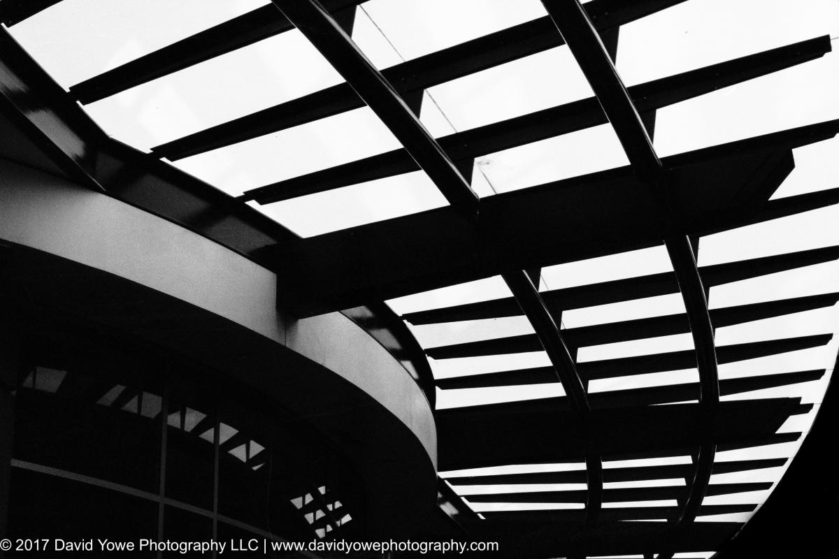 06_Panels of light