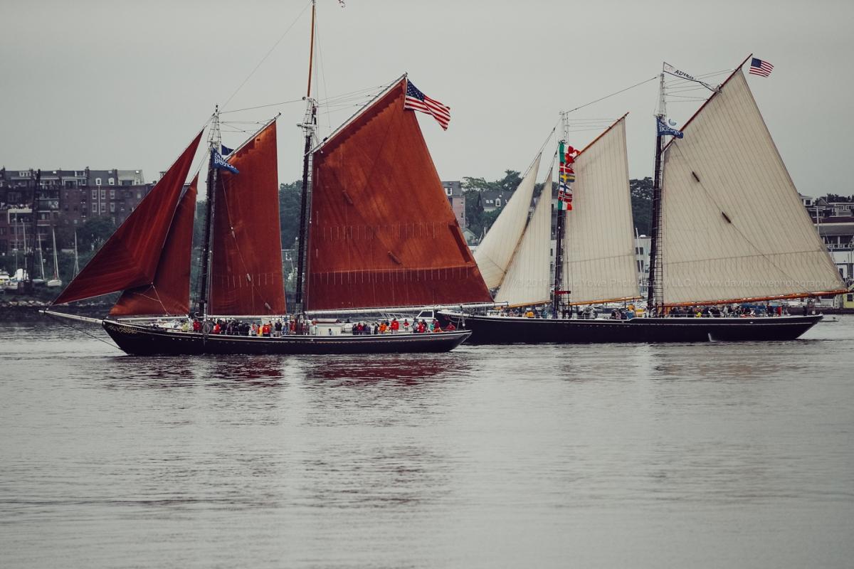 2017 Sail Botson (DLY_7336)