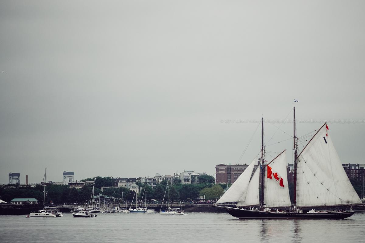 2017 Sail Boston (DLY_7356)