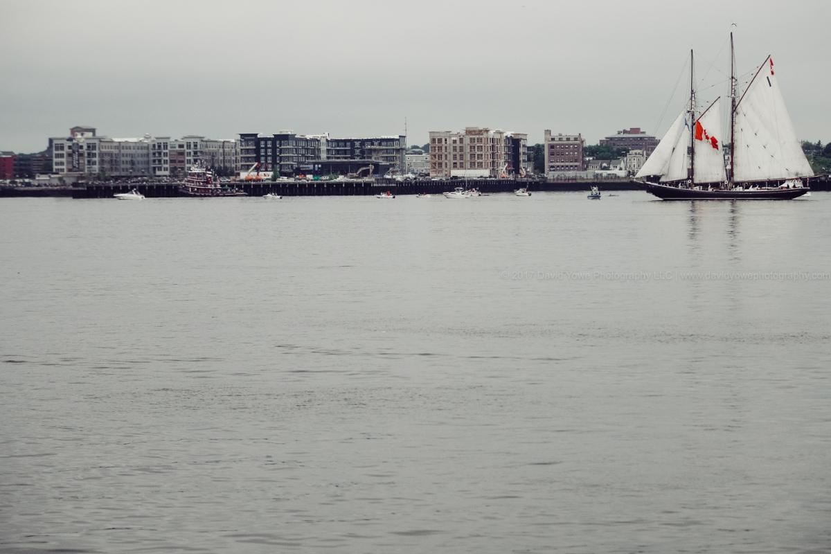 2017 Sail Boston (DLY_7358)