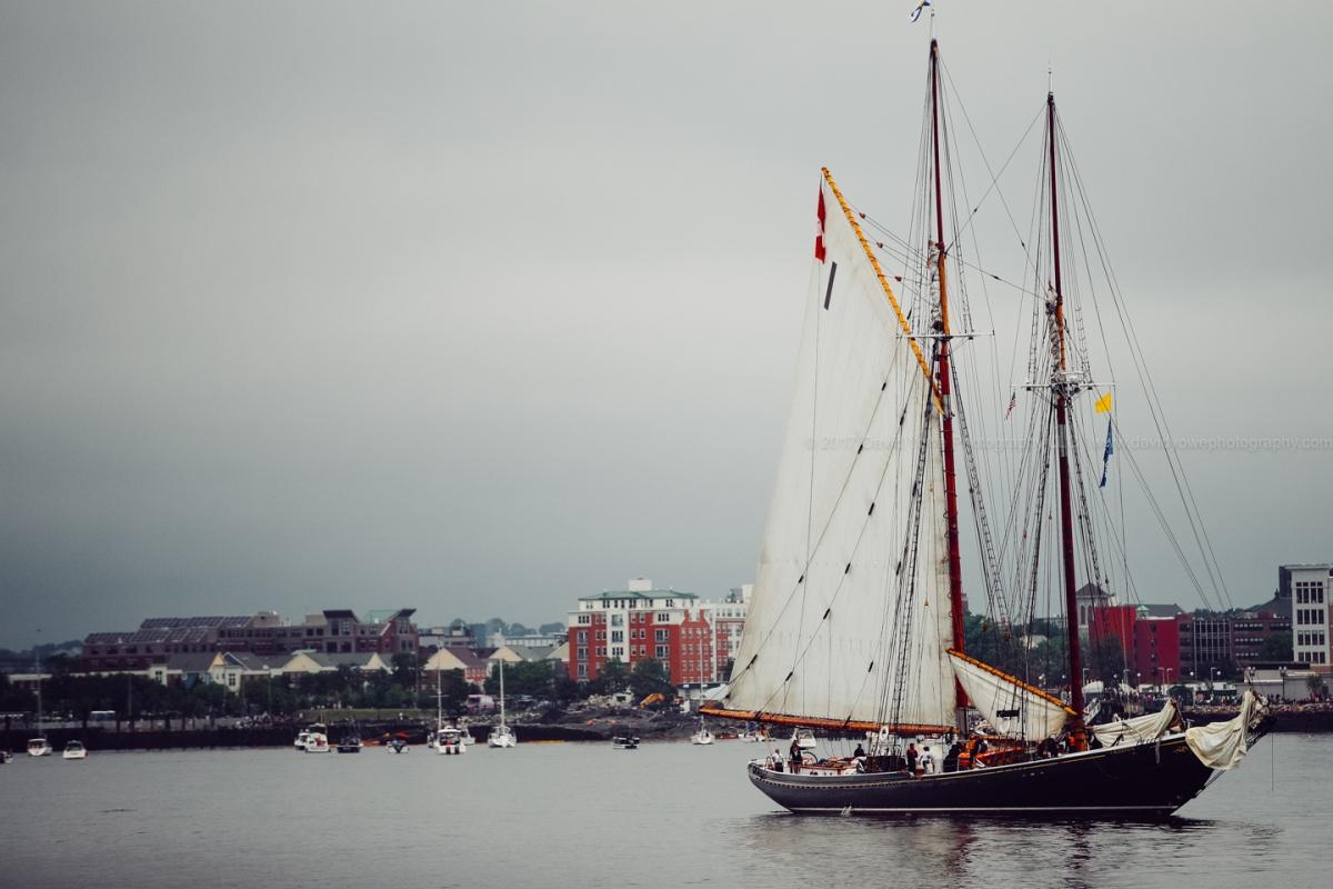 2017 Sail Boston (DLY_7382)