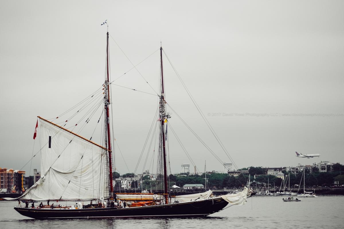 2017 Sail Boston (DLY_7388)