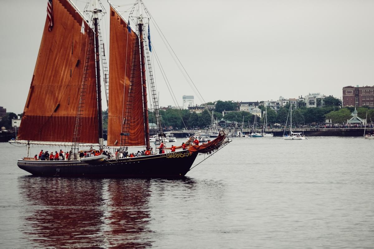 2017 Sail Boston (DLY_7448)