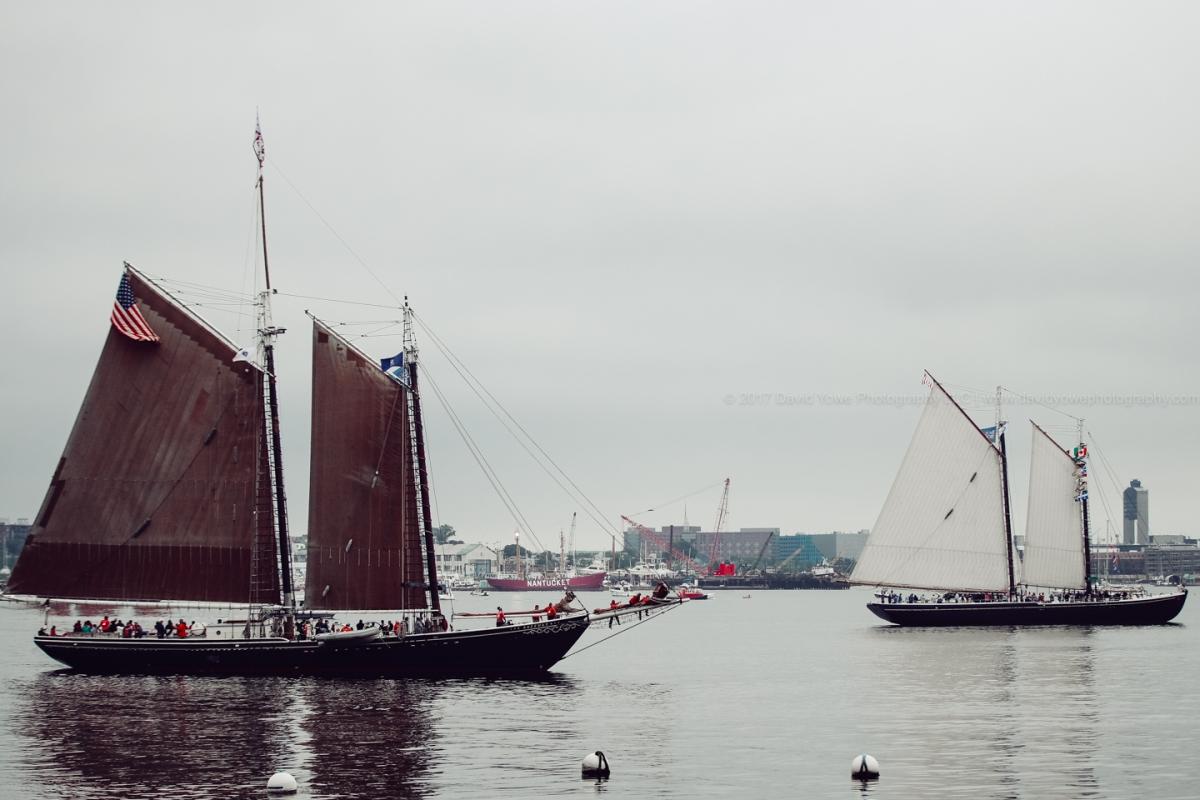 2017 Sail Boston (DLY_7474)