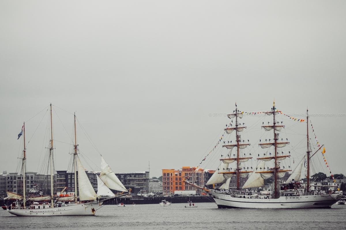 2017 Sail Boston (DLY_7508)
