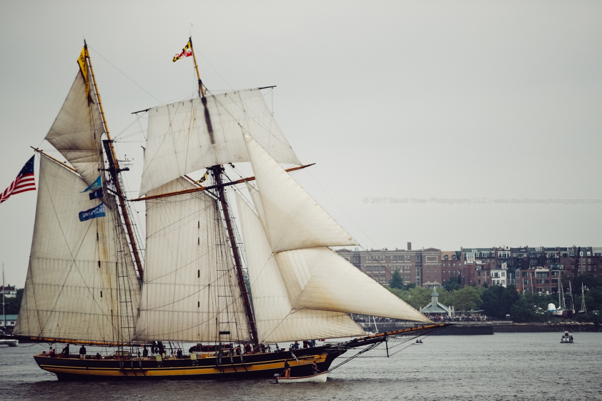 2017 Sail Boston (DLY_7542)