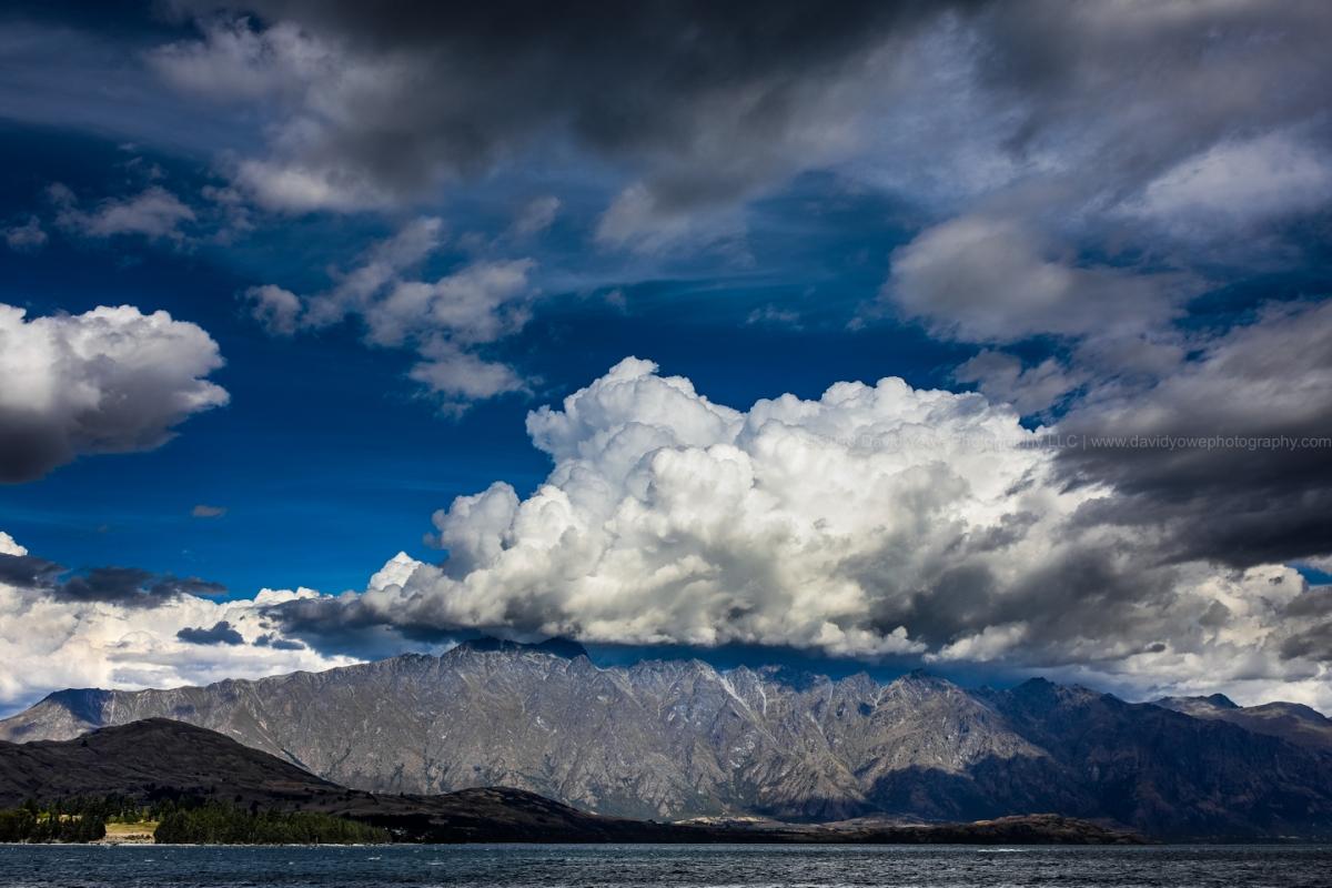 2018 NZ (DLY_1601)