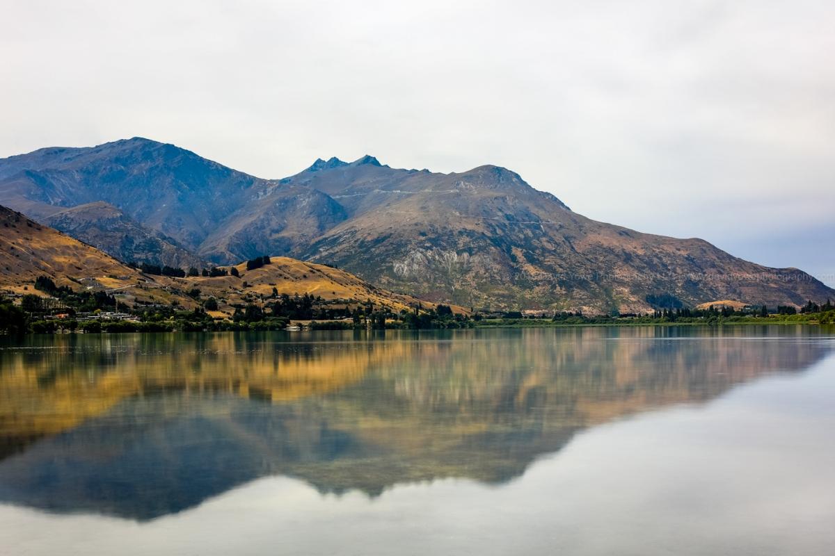 2018 NZ (DLY_1774)