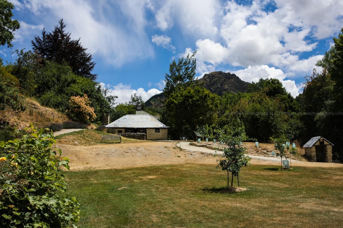 2018 NZ (DLY_1866)