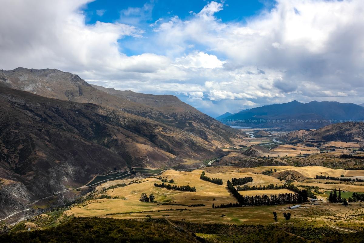 2018 NZ (DLY_1934)