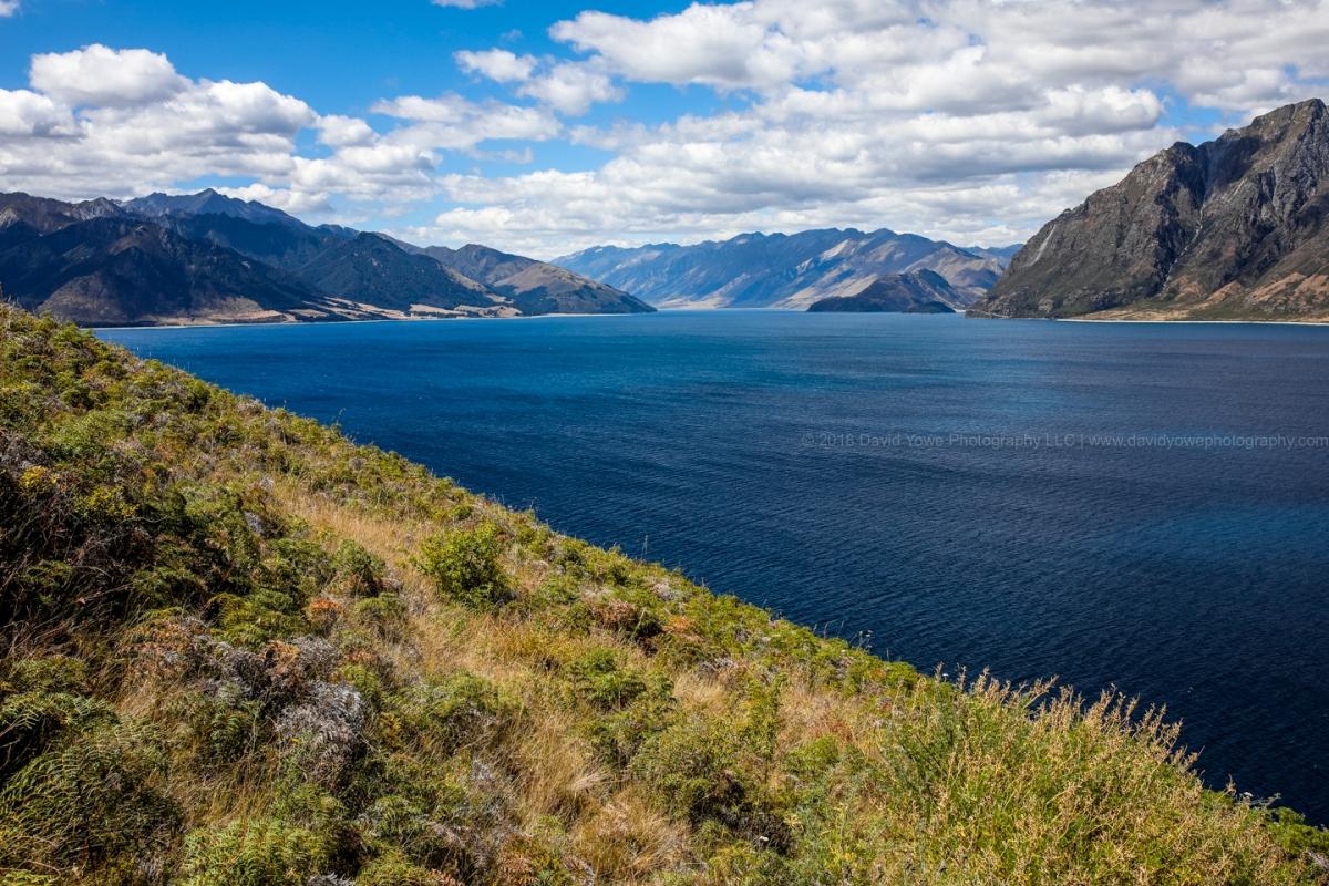 2018 NZ (DLY_2219