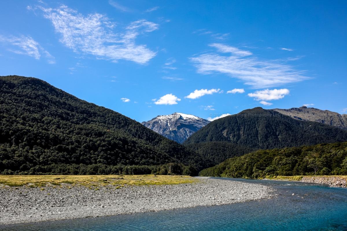 2018 NZ (DLY_2260)