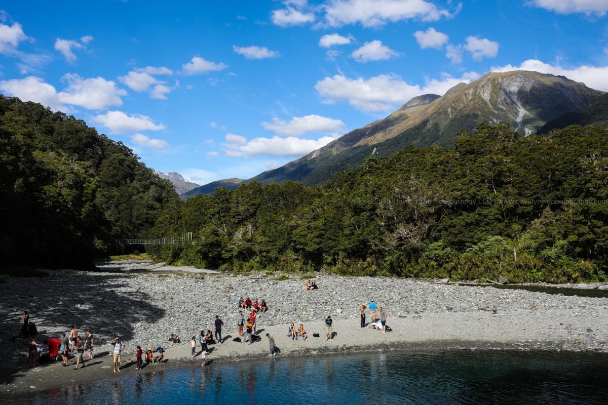 2018 NZ (DLY_2322)