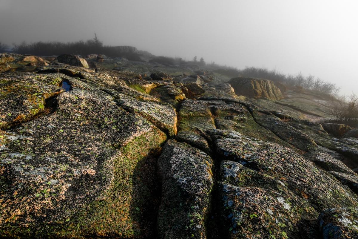 Acadia (DLY_5871-2)