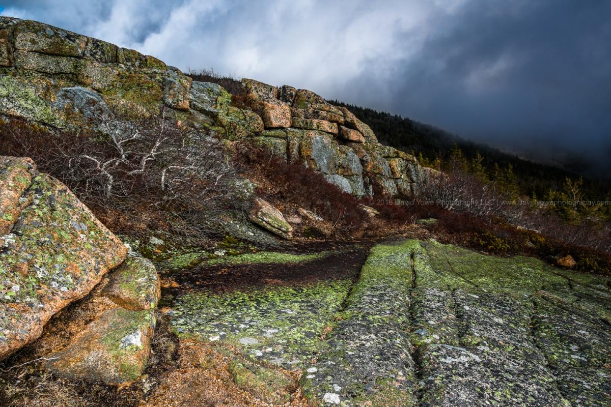 2018 Acadia (DLY_5933-2)