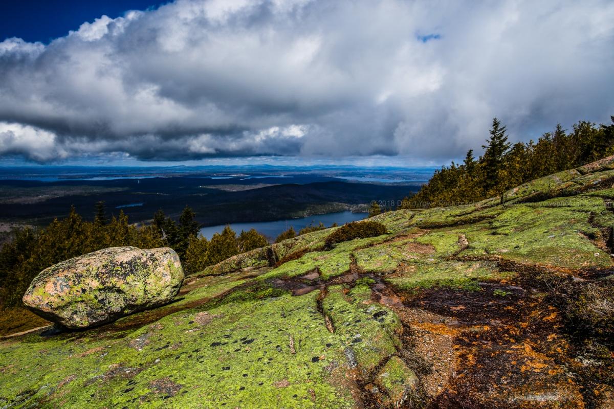 2018 Acadia (DLY_5959)