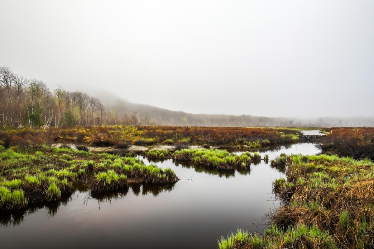 2018 Acadia (DLY_7034)